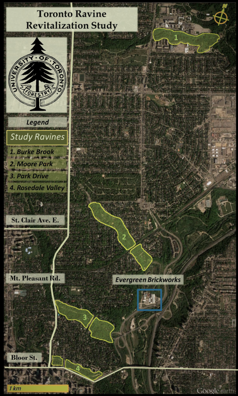 Rosedale Ravines Overview 2016.png