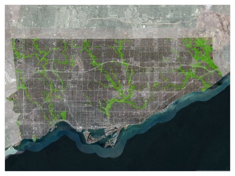 Toronto Trails 36x48 as of June 2017